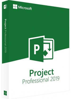 pakke med teksten project professionel 2019